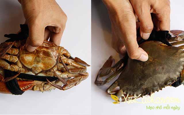 Mẹo chọn cua biển ngon - cách làm lẩu cua biển