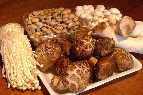 Các loại nấm - cách nấu lẩu bò ngon nhất