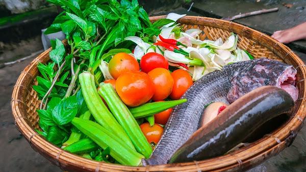 Cách nấu lẩu cá lóc ngon chuẩn vị Nam Bộ - cách nấu lẩu cá lóc ngon