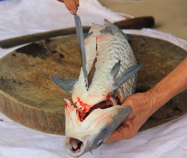 Sơ chế cá đúng cách để không bị tanh - cách kho cá ngon nhất