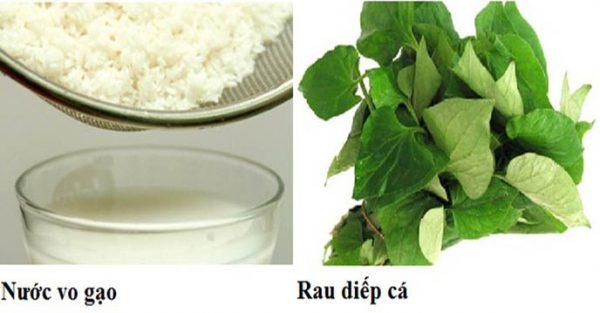 Cách trị ho cho trẻ sơ sinh bằng rau diếp cá và nước vo gạo - cách trị ho cho trẻ em