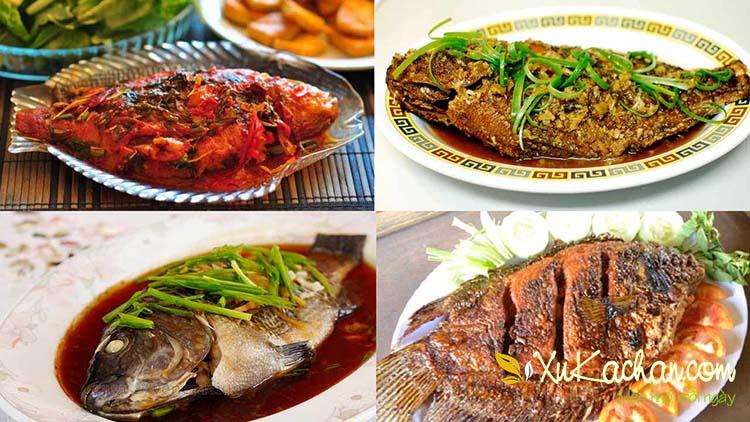 Tổng hợp các món ngon từ cá vừa dễ làm, vừa hấp dẫn