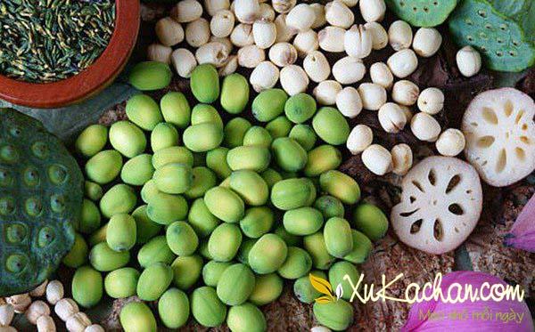 Hạt sen có rất nhiều các tác dụng tốt đối với sức khỏe con người - cách nấu chè hạt sen đậu xanh