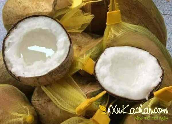 Chọn dừa sáp non ngon để làm sinh tố