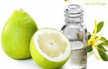 Cách làm tinh dầu bưởi nguyên chất tại nhà
