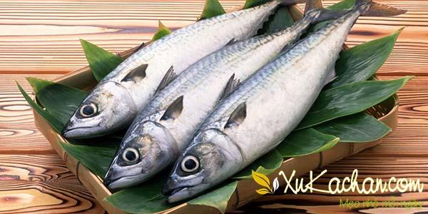 Cá ngừ tươi - cách làm bún cá ngừ